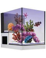 Concept Glass Abyss Peninsula 20g AIO Aquarium - Innovative Marine (DISCONTINUED)