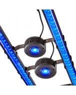X series dual LED and Kessil A360X combo bundle - bottom angle, lit
