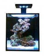 10 NUVO Fusion Aquarium Premium Starter Kit - Innovative Marine Front