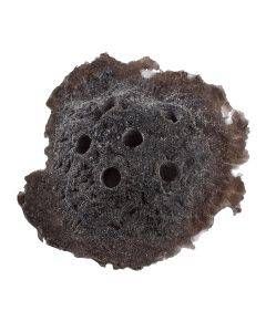 Dark Brown Sandbed Frag Rock