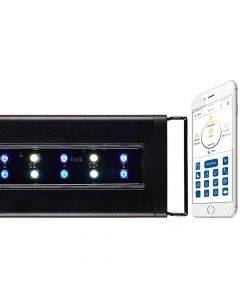 Orbit Marine IC LED Light Fixture - with LOOP Controller - Current USA