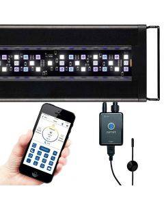 Orbit Marine LED Light Fixture - with LOOP Control & Temp Sensor