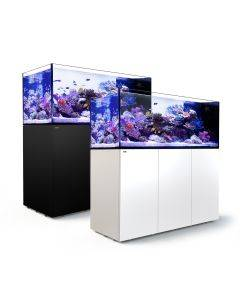 Reefer Peninsula 650 System (140 Gal) - Red Sea