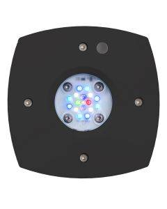 Prime 16 HD LED Reef Light - Black Body