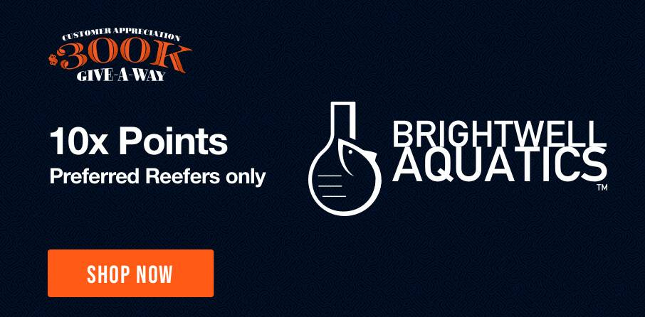 10X Points on Brightwell - Some exclusions apply