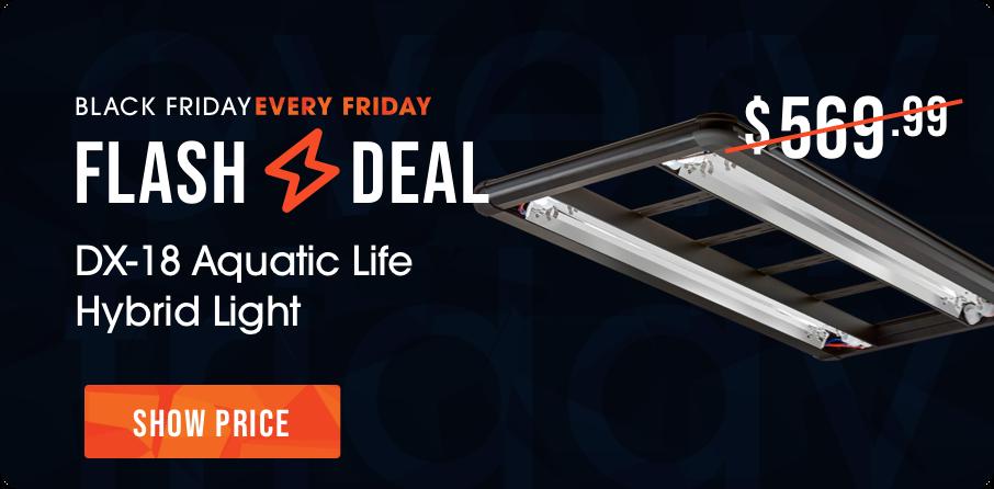 Flash Friday Deal - Aquatic Life DX-18 Hybrid Light Fixtures