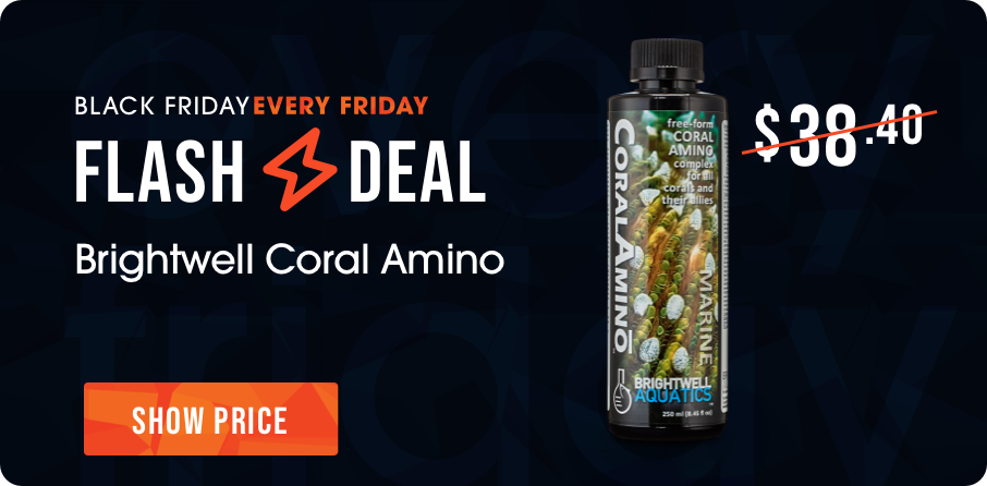 Flash Friday Deal - Coral Amino - Brightwell - Multiple Sizes Available