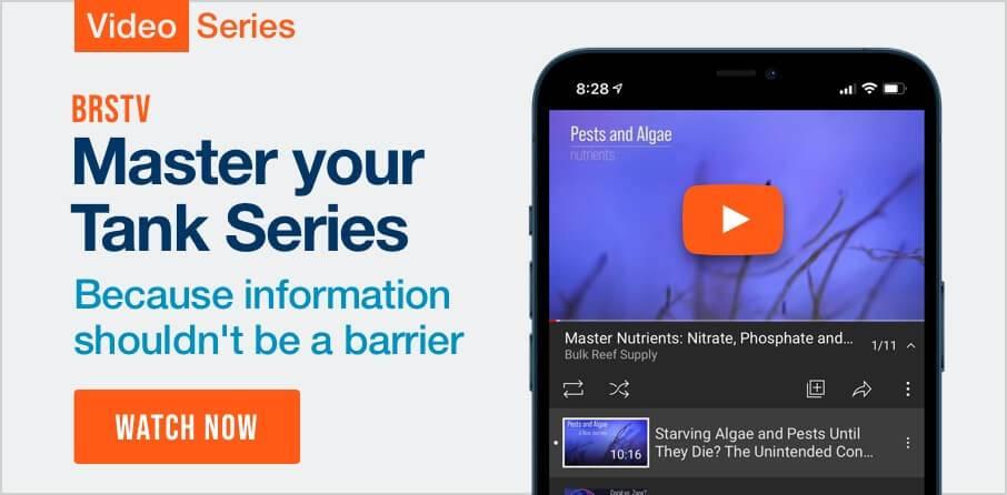 Master your Saltwater Aquarium - New Video Series