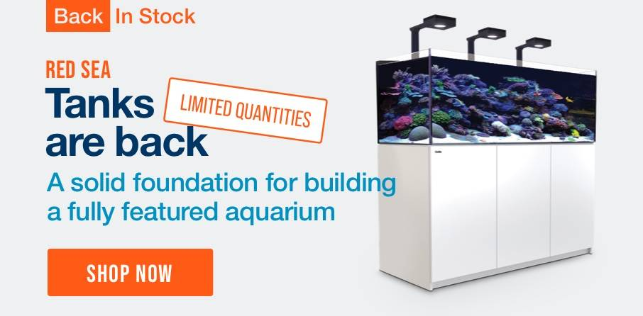 Red Sea Aquariums - Back In Stock