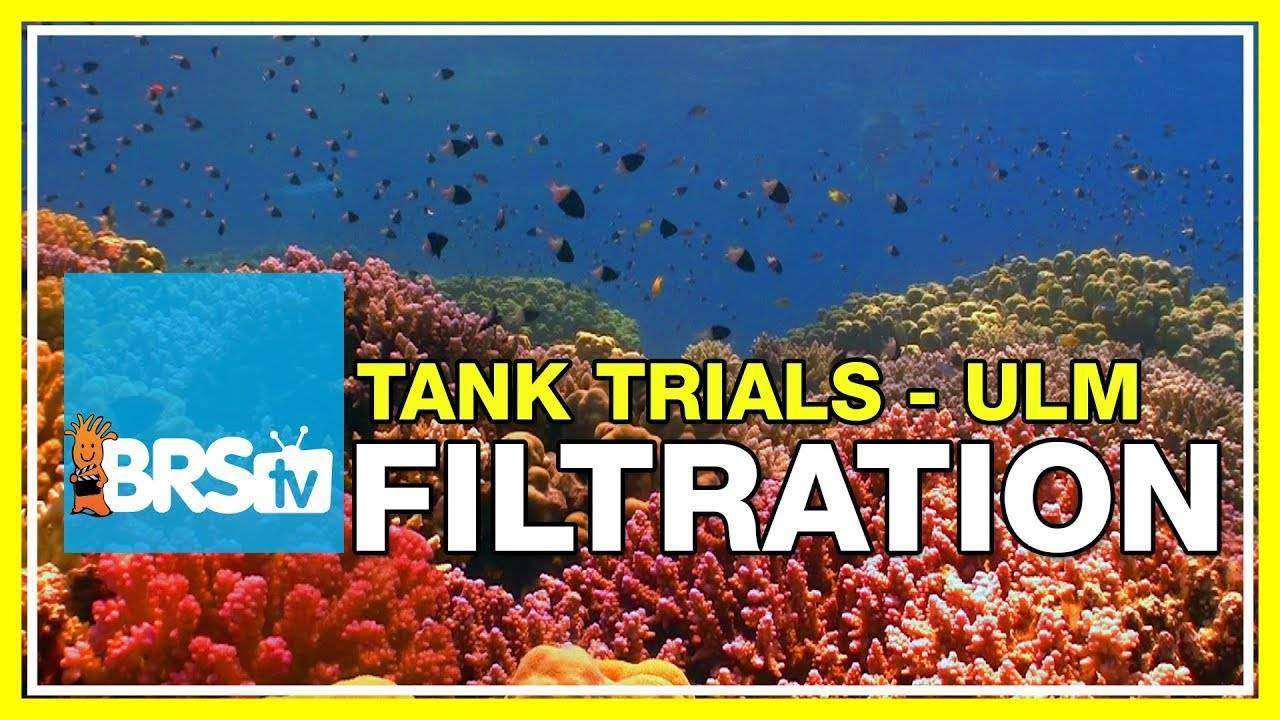 Filtration methods & requirements for a ULM Reef Tank | BRStv Tank Trials EP4