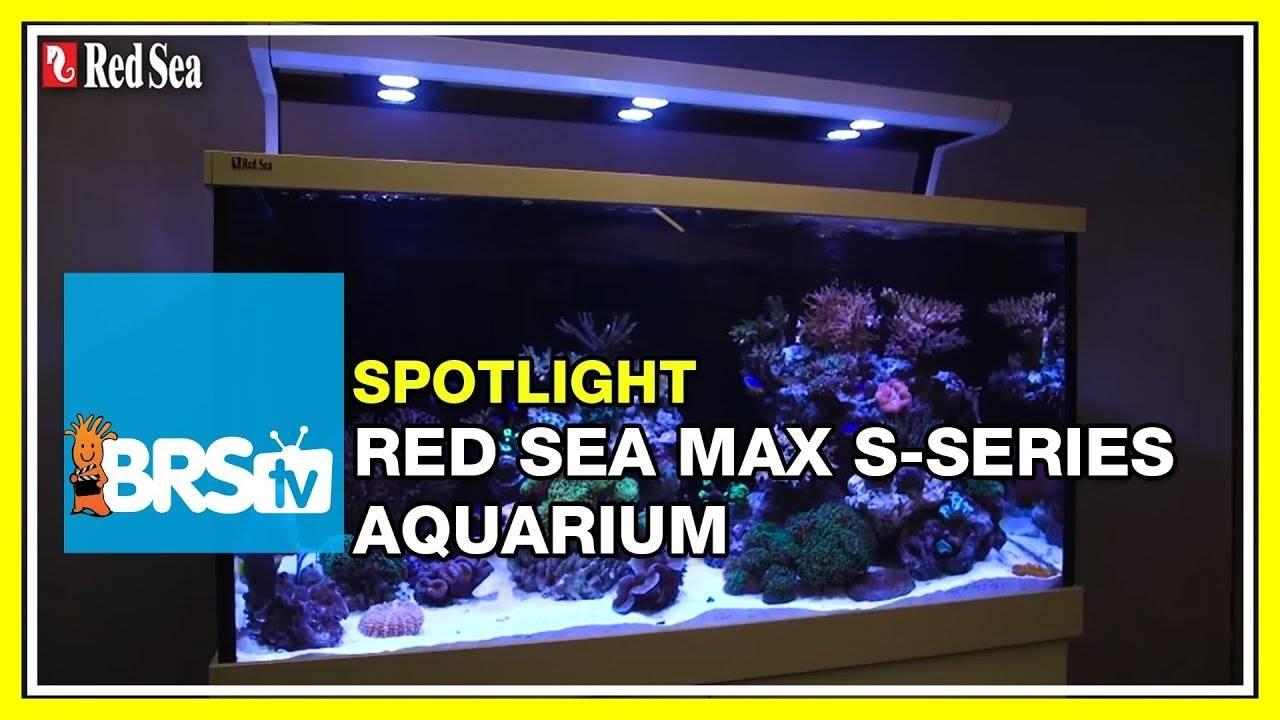 Spotlight on the Red Sea Max S Aquarium Systems - BRStv