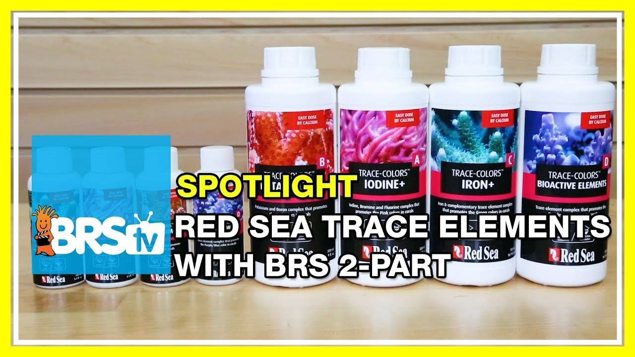 Step up your BRS 2-part dosing game with Red Sea Trace Colors - BRStv