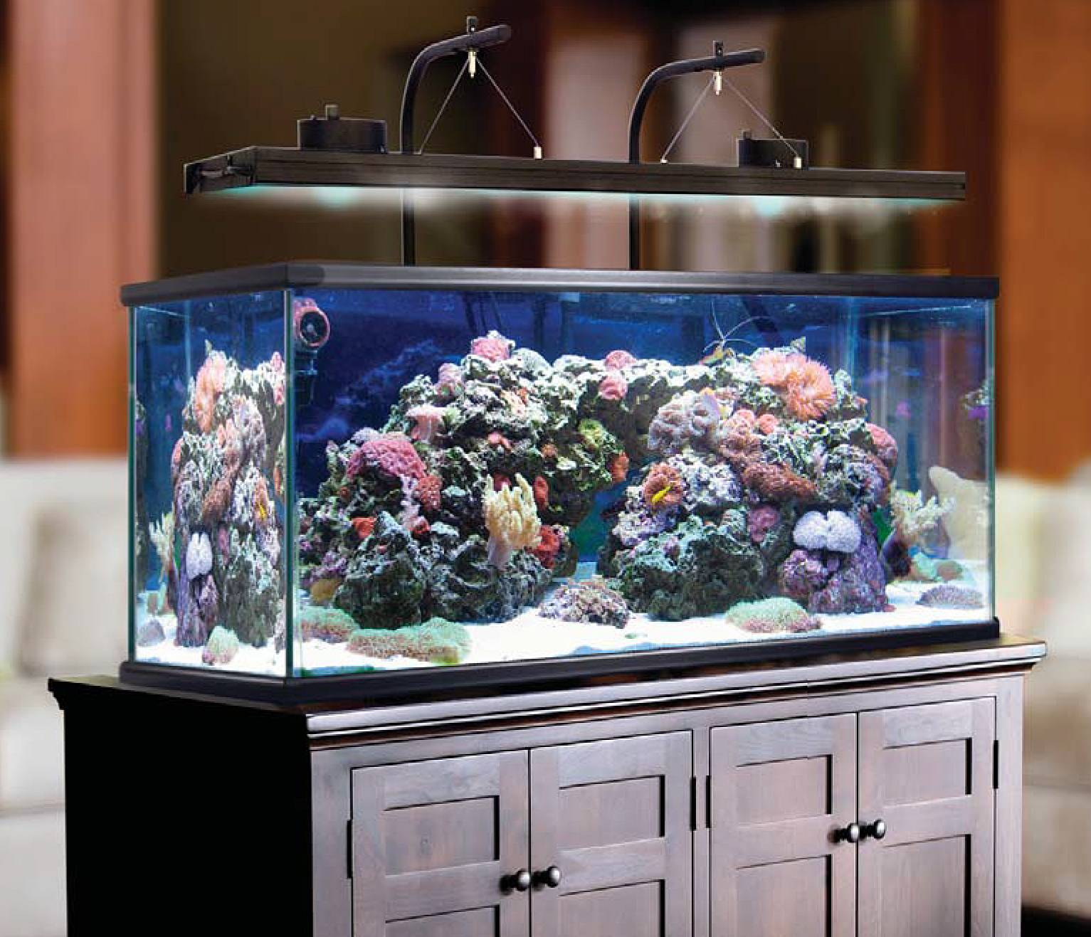 Build Your Perfect Reef Light with Aquatic Life's New T5HO/LED Hybrid Light Fixture