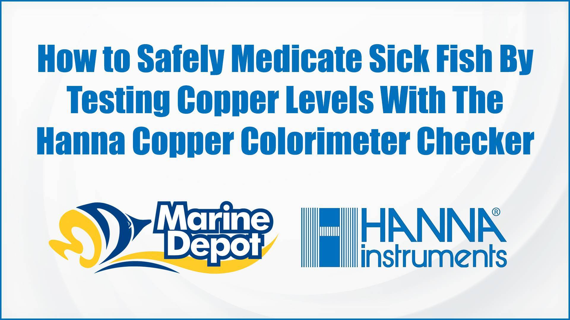 How to Safely Medicate Sick Fish By Testing Copper Levels With The Hanna Copper Colorimeter Checker - Marine Depot Chats with Experts #1
