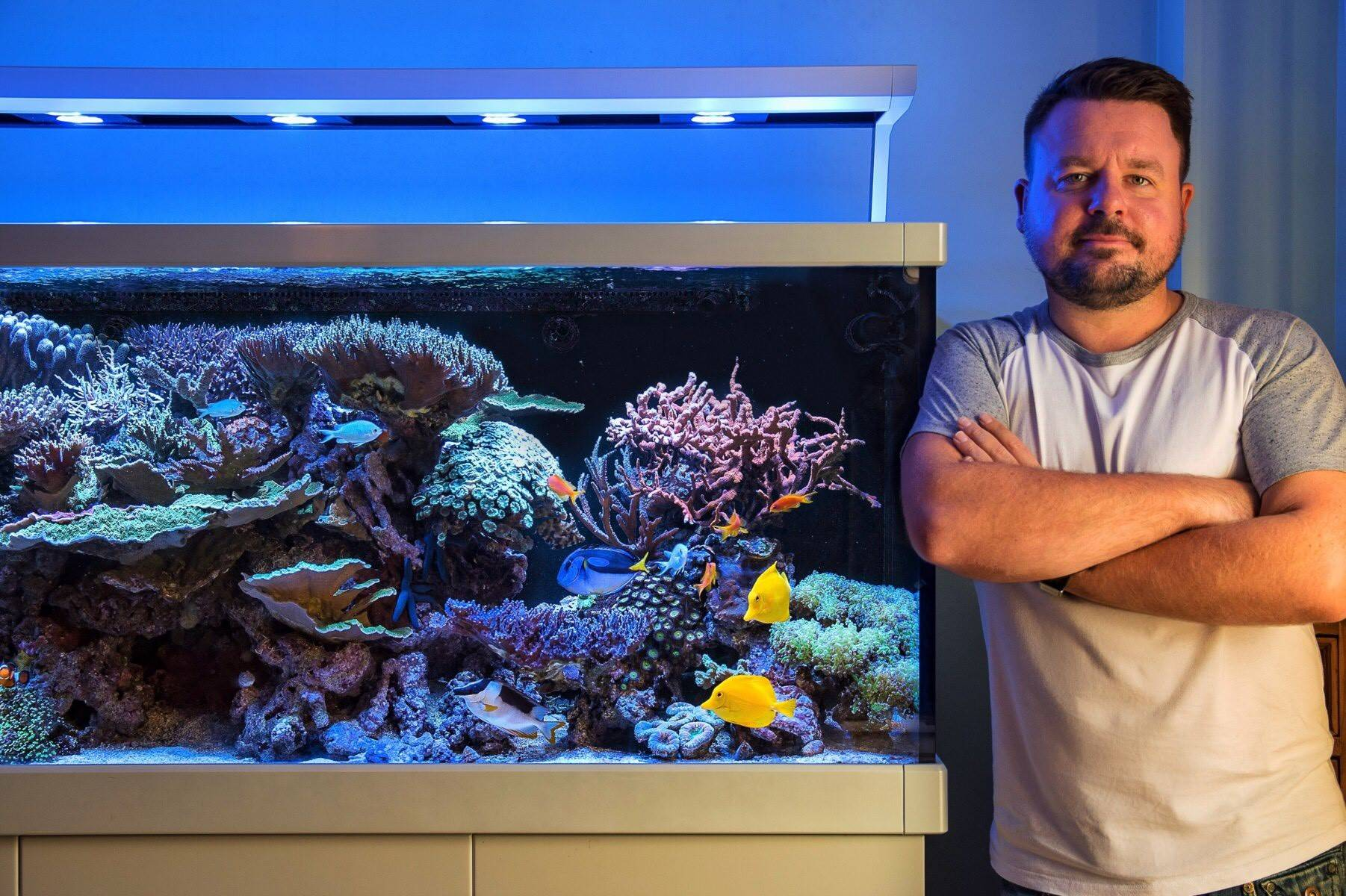 Liam Lovatt's Red Sea Max S-650 Mixed Reef Aquarium - A Featured Tank from the UK!