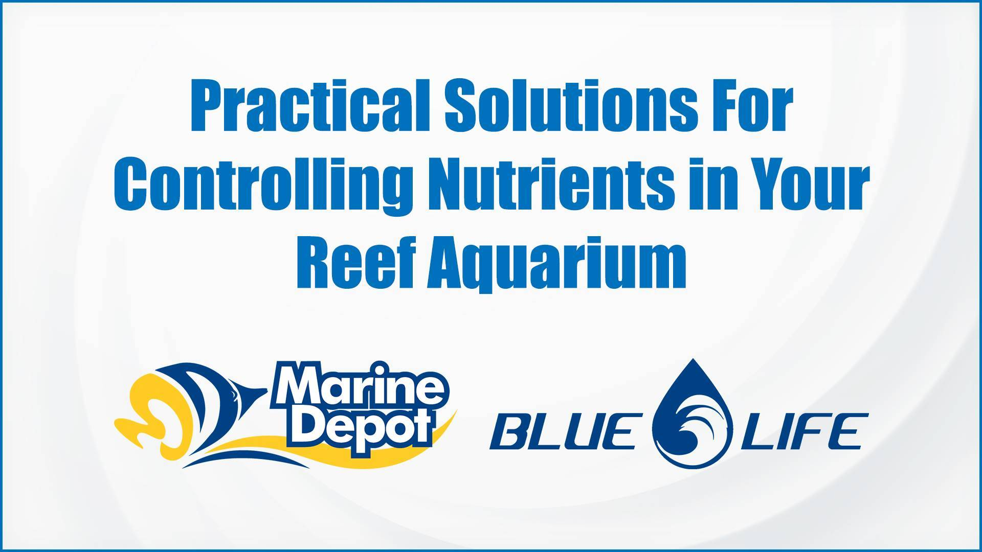 Practical Solutions For Controlling Nutrients in Your Reef Aquarium - Marine Depot Chats with Experts #2