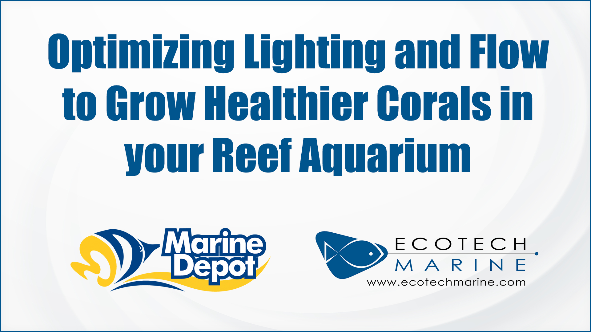 Optimizing Lighting and Flow to Grow Healthier Corals in your Reef Aquarium - Marine Depot Chats with Experts #3