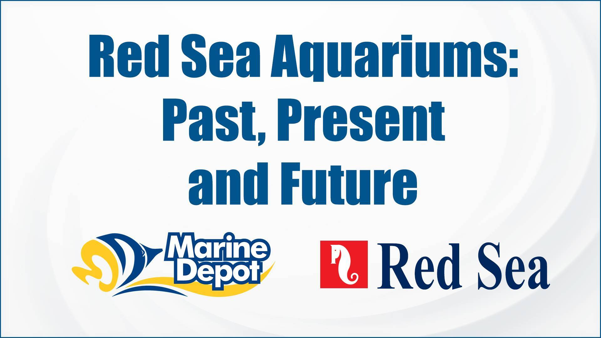 Red Sea Aquariums: Past, Present, and Future - Marine Depot Chats with Experts #4