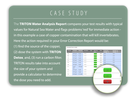 the-triton-method-case-study