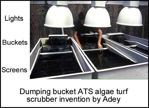 dumping bucket ats algae turf scrubber