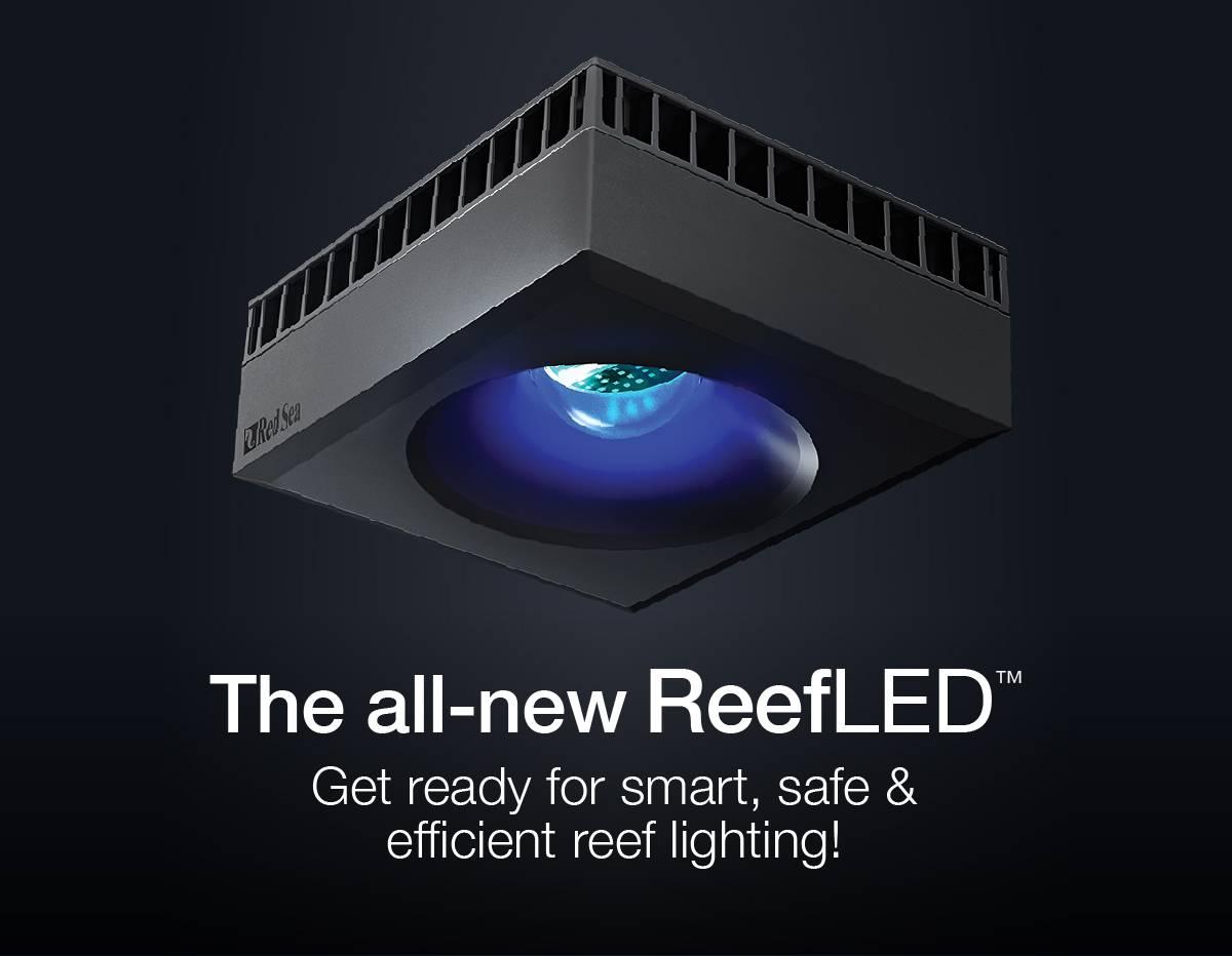 ReefLED Red Sea Light