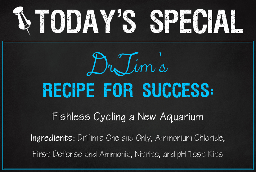 DrTim's Aquatics Recipes for Success: Fishless Cycling a New Aquarium (Using One and Only, Ammonium Chloride, and First Defense)