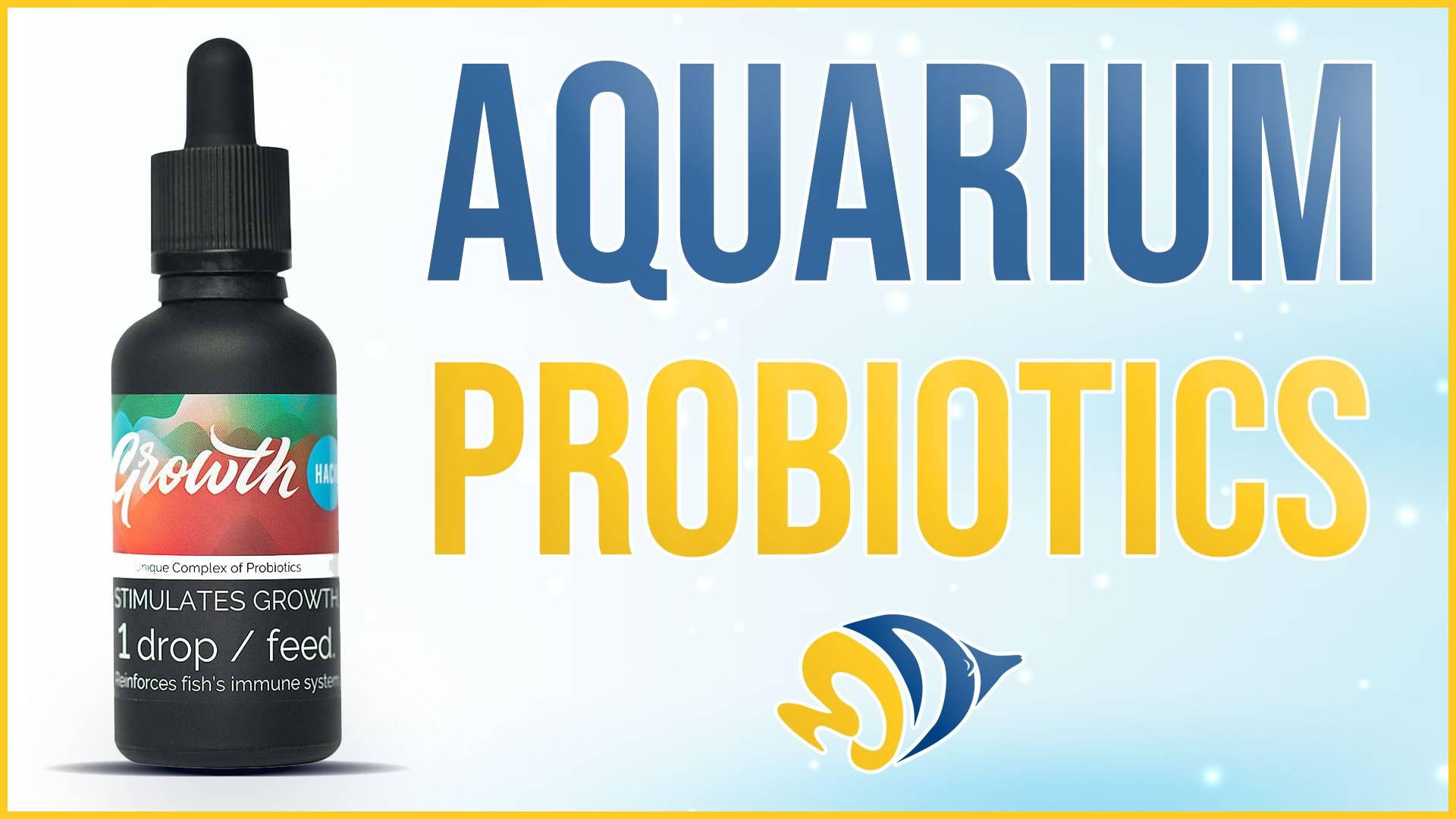 Aquarium Probiotics