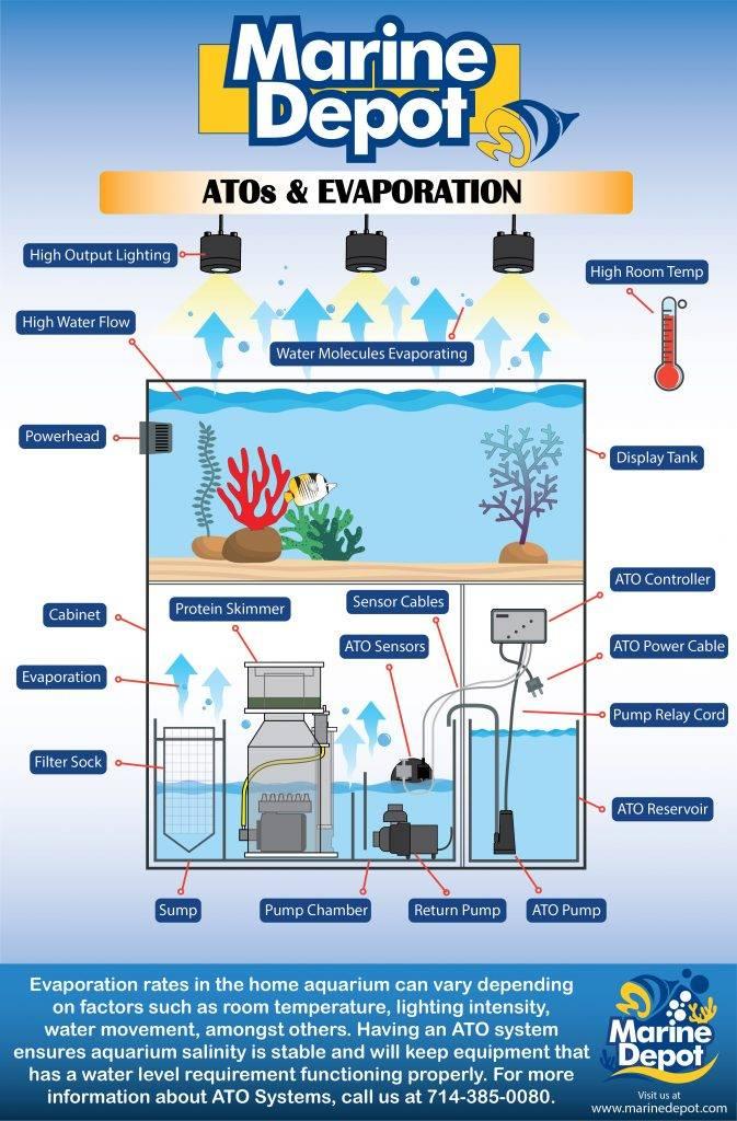 Various causes of evaporation in aquariums
