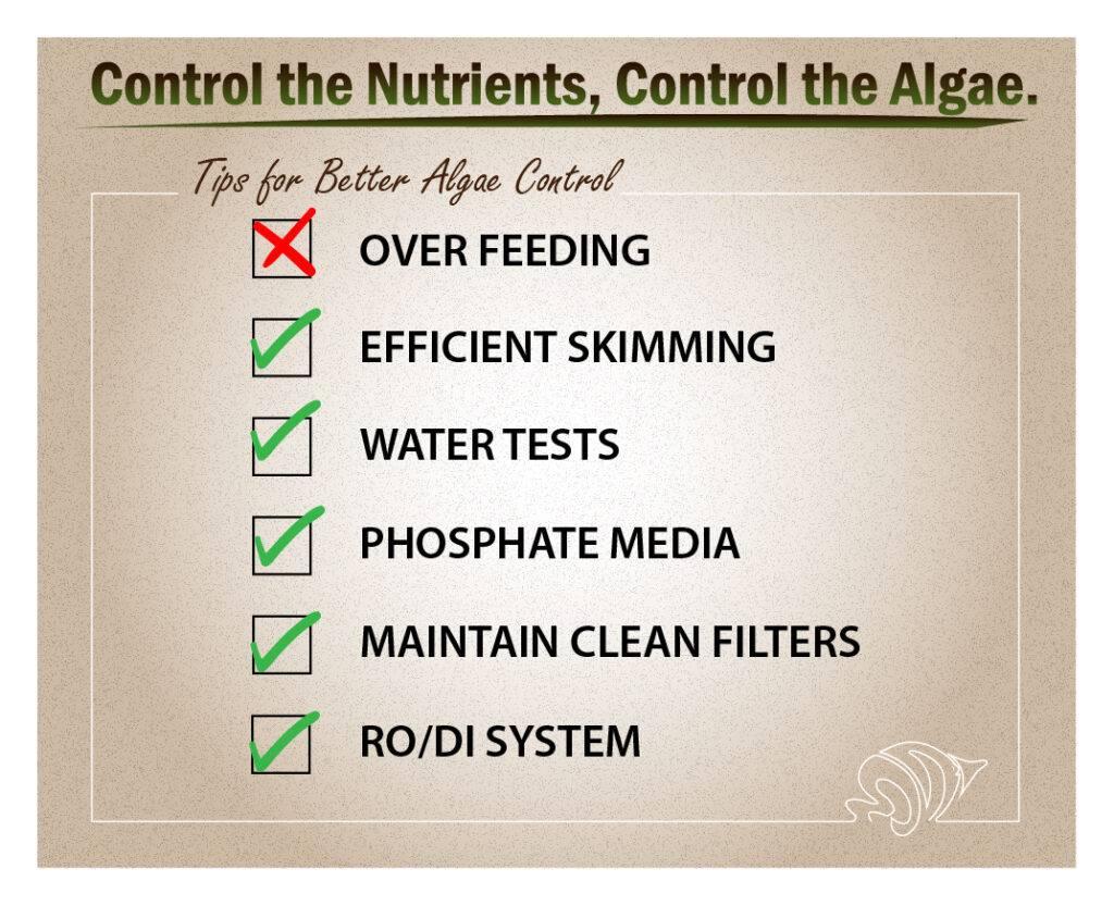 Control the Nutrients, Control the Algae