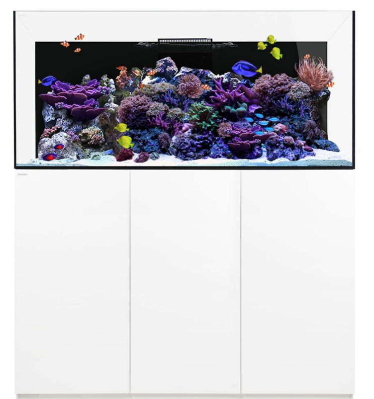 Blog: Why are all new marine tanks the same?