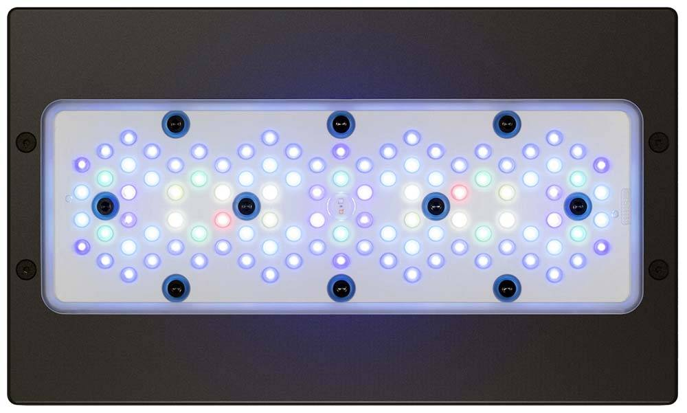 Radion XR30 Gen 5 Blue LED Fixture