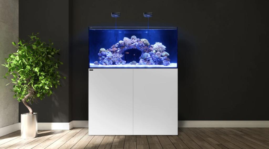 WaterBox X 90.3 aquarium