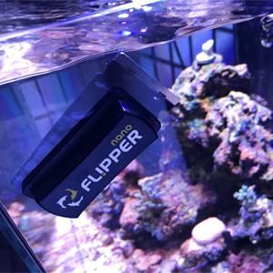 How To Restore a Neglected Aquarium - Reviving a Reef