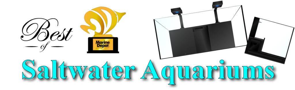 Best of Saltwater Aquariums