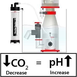 How to Raise pH in Your Marine Aquarium