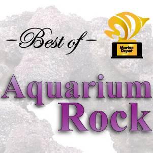 Best Aquarium Rock: Our Top Picks