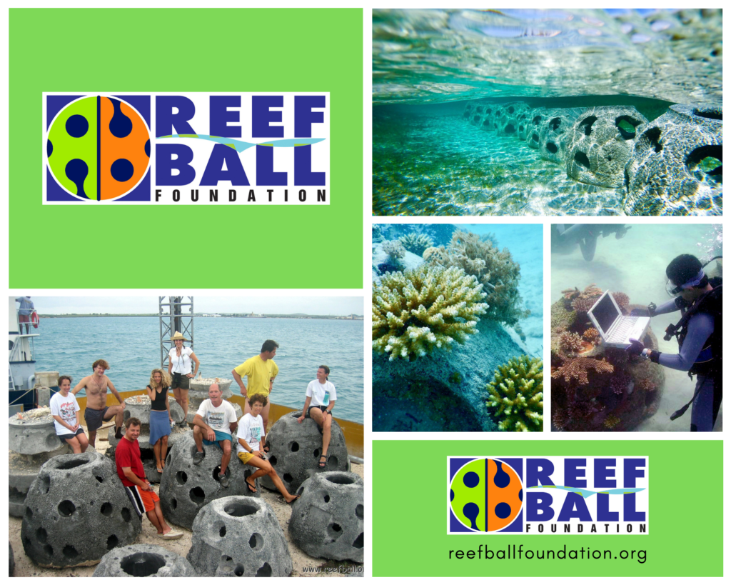 Courtesy of The Reef Ball Foundation