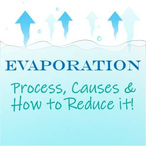 Evaporation in Your Aquarium: Process, Causes, and How to Reduce It!