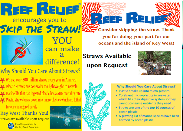 Image courtesy of Reef Relief