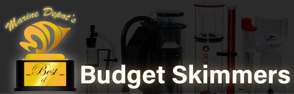 Best Budget Skimmers