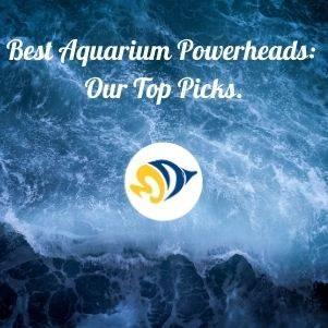 The Best Aquarium Powerheads: Our Top Picks