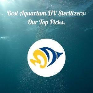 Best Aquarium UV Sterilizers: Our Top Picks