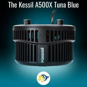 The Kessil A500X: Pushing the Limits of LED Fixtures.