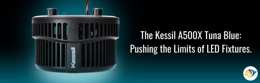 The Kessil A500X Tuna Blue: Pushing the Limits of LED Fixtures.