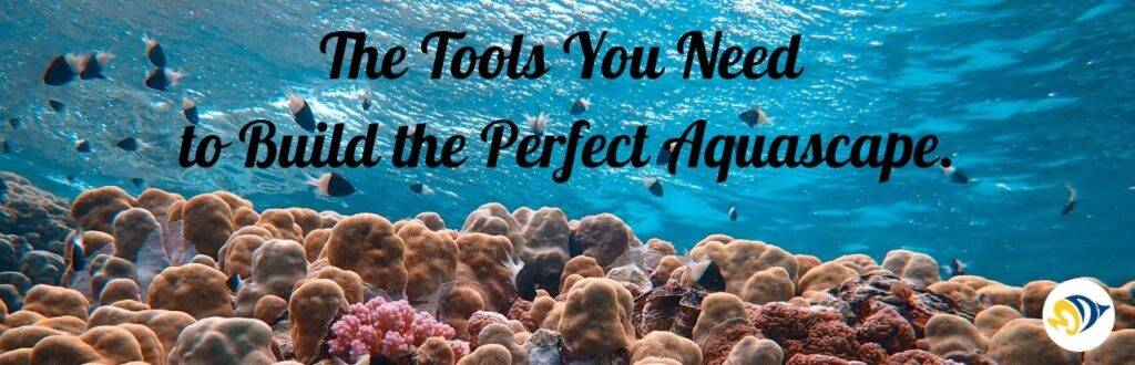 The Tools You Need to Build the Perfect Aquascape.