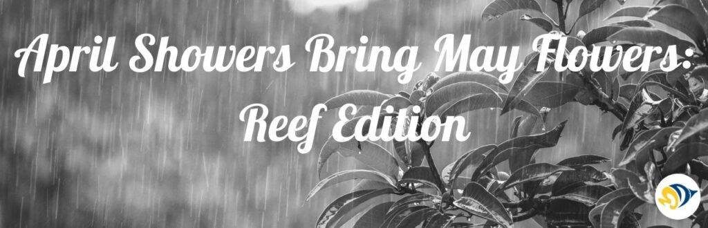 April Showers Bring May Flowers: Reef Edition