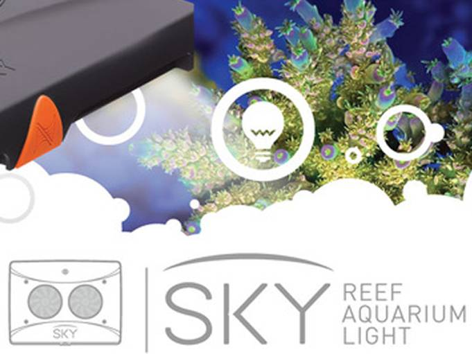 For Neptune Systems, SKY is The Limit.