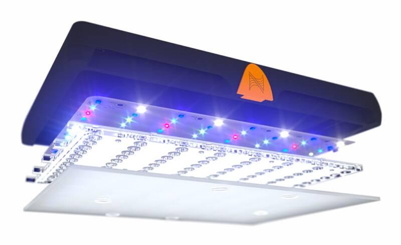 Neptune SKY LED Fixture/ Diffuser