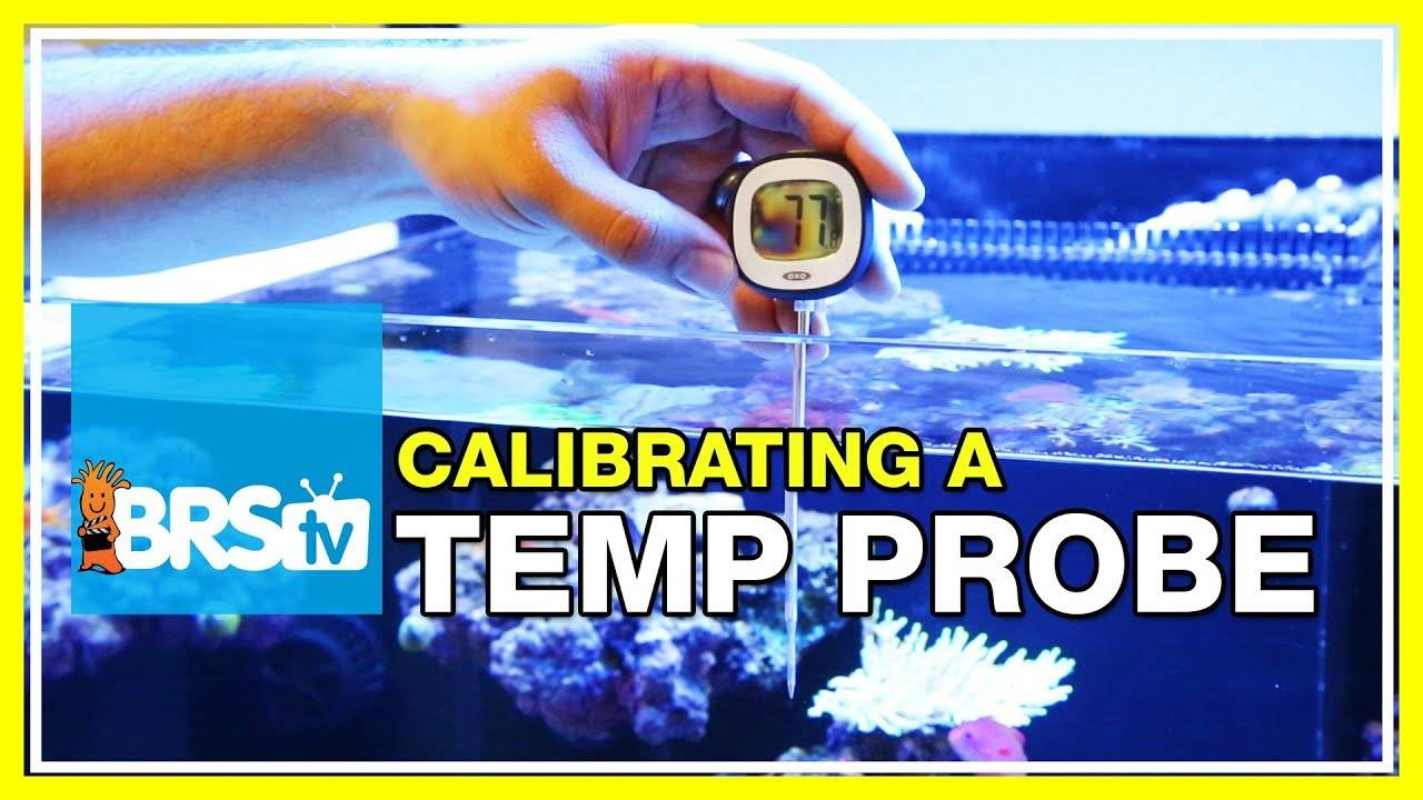 How do you calibrate your reef aquarium controller's temperature probe? | 52 FAQ