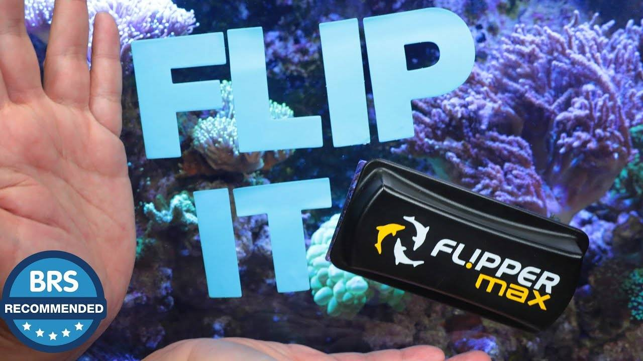 It's BRS Recommend - The Flipper magnetic aquarium glass cleaners!